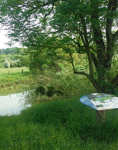 Panneau Pertes de la Meuse ©Didier Arseguel