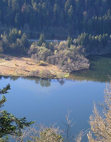 Lac de Longemer de Belle Roche ©JC Ragué