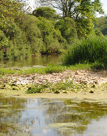 Pertes de la Meuse ©Marie Bochu