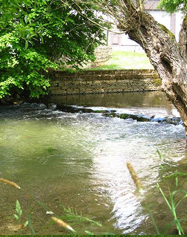 Ruisseau de l'abreuvoir ©Maximilien Perrin